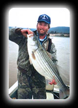Illinois River Striper